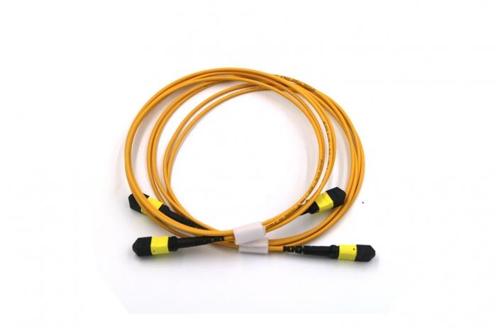 12 Core MPO Trunk Cable 1