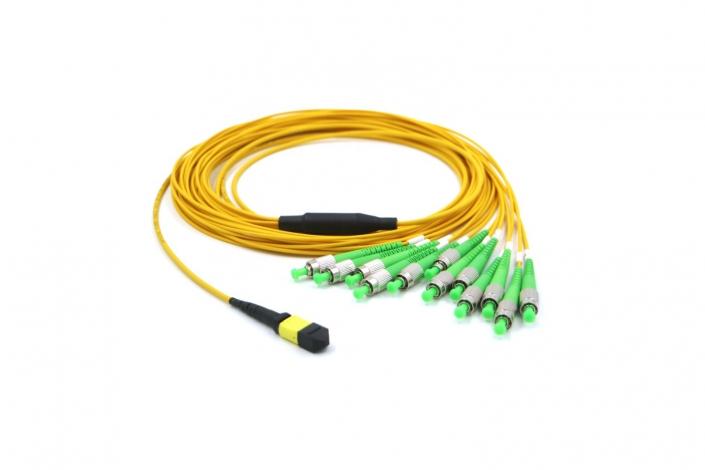 MTP FCAPC Cable 10