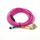 12Core Mpo Lc Om4 Pink 4.5mm Patch Cable 2